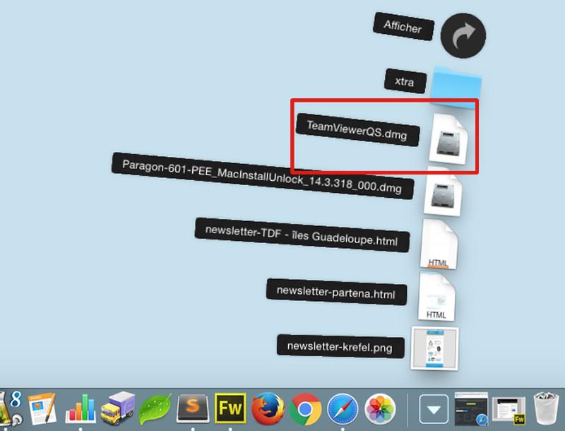 Fichier de téléchargement Teamviewer
